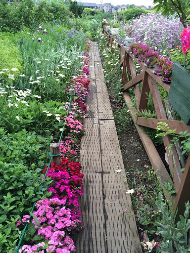 2015,5森田ガーデン2.png